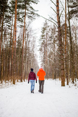 Photo from back of walking men and women in winter forest