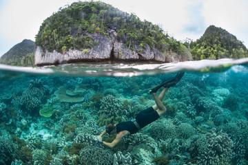 A Snorkeler Explores a Shallow Reef in Raja Ampat