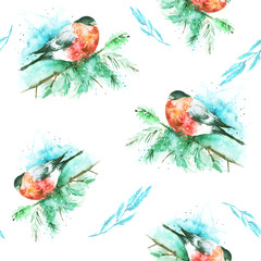 Seamless watercolor pattern with a picture of a bird, bullfinch. A bird on a spruce branch. Plant branch. The bird is red. Watercolor card.