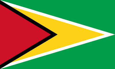 Flag in colors of Guyana, vector image.