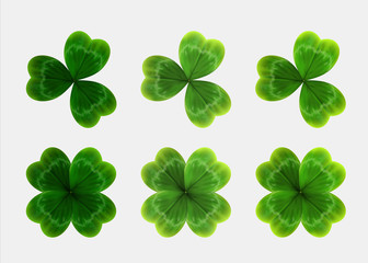 Set of green leaves of clover. realistic vector