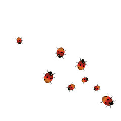Delicate background with ladybugs. Trendy template for a postcard, stamp, banner or poster. Cute Ladybugs on a white background. Vector