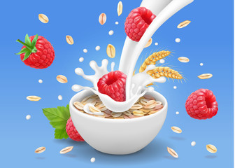 Porridge oats in bowl with raspberry. Oatmeal cereal and berries advertising. Breakfast with oatflakes