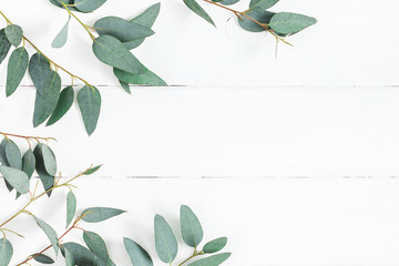 Eucalyptus leaves on white background. Frame made of eucalyptus branches. Flat lay, top view, copy space Fotoväggar