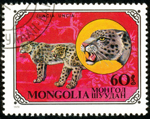 Ukraine - circa 2018: A postage stamp printed in Mongolia show Snow Leopard or Panthera uncia. Series: Wild cats. Circa 1979.