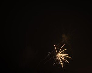 Firework shot in the sky