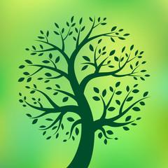 Organic green tree logo, eco emblem, ecology natural symbol. Vector illustration