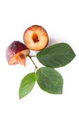 Half of ripe plum with leaf isolated on a white background..