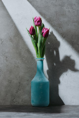 purple spring tulip flowers in blue vase on concrete surface with shadow