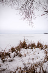 Photo of snowy field with dry grass