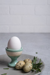 Easter  festive table setting with  gray plate, quail eggs  and chicken egg standing in the egg cup with leaf sprigs of eucalyptus. On a gray concrete background.