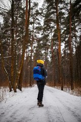 Photo from back of walking woman with backpack over winter forest