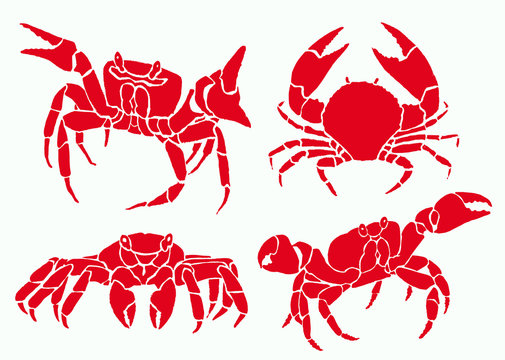 Graphical set of red crabs isolated on white background,vector sea-food illustration