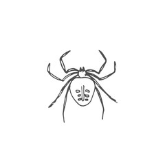 spider vector draw