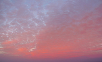 Pink, feathery clouds.