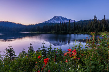Amazing view on the mount reflection in the violet lake. Mount Rainier National Park, Reflection Lake, Summer