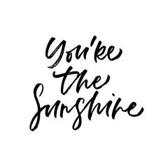 You're the sunshine. Valentine's Day calligraphy phrases. Hand drawn romantic postcard. Modern romantic lettering. Isolated on white background.
