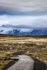 Wooden Trail in the Icelandic Wilderness Leading through the Tundra