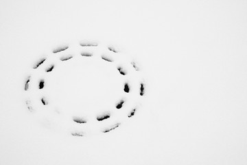 Trail from manhole in the snow, black and white photo