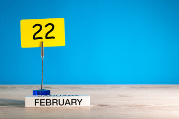 February 22nd. Day 22 of february month, calendar on little tag at blue background. Winter time. Empty space for text, mockup