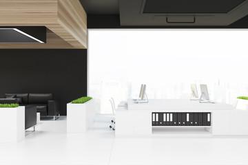 Loft open space office, a black ceiling, grass