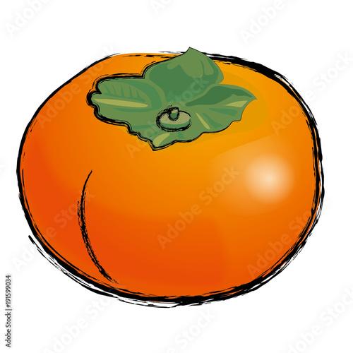 柿のイラスト カキの実手描き風イラスト 墨絵ベクターデータ