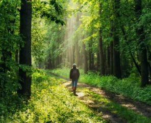 Photo sur Plexiglas Route dans la forêt spring forest. woman in a picturesque forest. beautiful sun rays