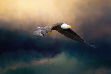 A glorious painted american bald eagle flying over the stormy sea. Fotoväggar