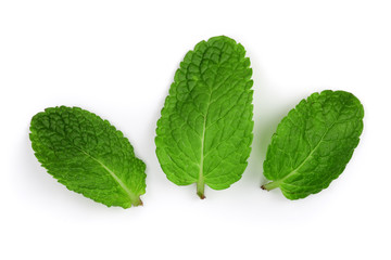 fresh green mint leaves isolated on white background, top view. Flat lay