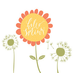 Hello Spring words in sunflower
