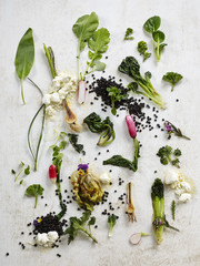 Mixed vegetables on a white wooden surface