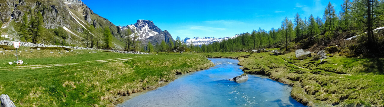 mountain panorama with torrent full of water in summer Alpe Devero