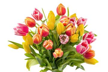 Tulpenstrauß bunt, isoliert