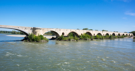 Fototapete - The medieval bridge over the Rhone River