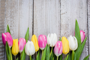 Fresh tulips on a pink wooden background for Mother's Day.