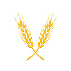 Agriculture wheat Logo Template. Vector illustration