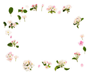 Frame of flowers apple tree on a white background with space for text. Top view, flat lay