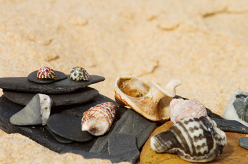 Beach theme of stones and seashells
