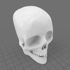 Stylized human skull
