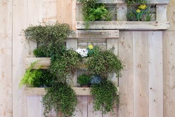 Vertikaler Garten, Paletten, Holz