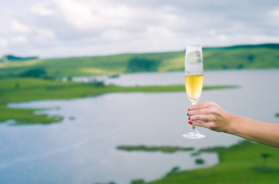 Young woman holding glass of sparkling (champagne)