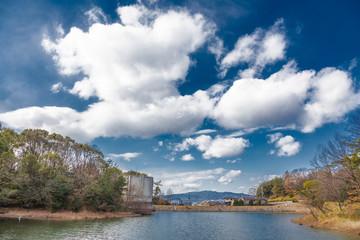 青空に浮かぶ雲