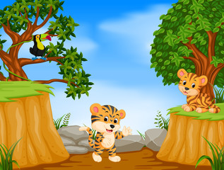two tiger and toucan with mountain cliff scene