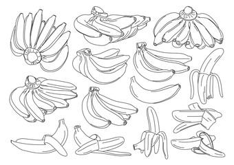 Banana isolated on white background vector illustration
