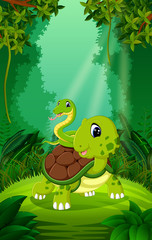 Turtle and snake in the clear and green forest