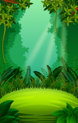 clean and green forest