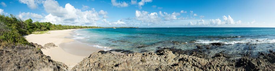 Panorama de la grande anse des Salines - Martinique