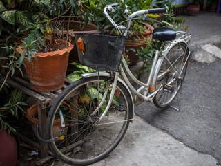 Foto op Plexiglas Fiets Bicycle with basket is parked in street