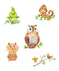 Cute forest animals and birds