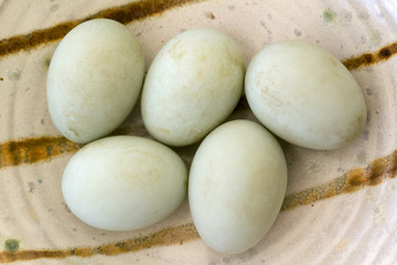 Five fresh free range duck eggs in a bowl. Shallow depth of field.